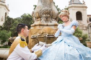 Cinderella & Prince