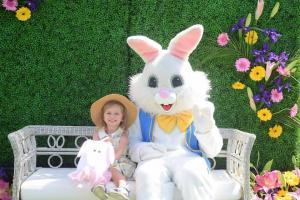 Easter Bunny IE