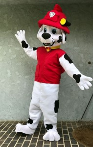 pawpatrolmarshall